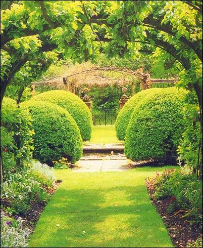 Английский элегантный стиль сада