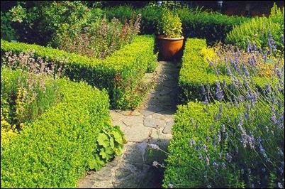 Дорожка в регулярном саду