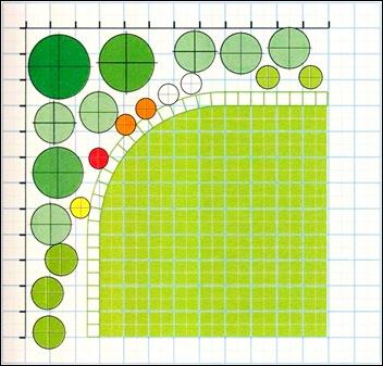 План посадки растений