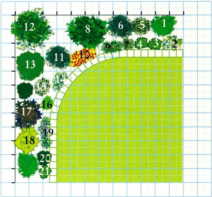 План посадок растений: планирование посадки растений в саду (статьи) .