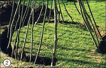 Как построить шалаш