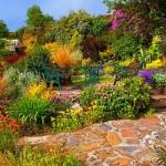 Сад с террасами