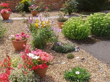 В садах, не требующих тщательного ухода, большие участки часто засыпают гравием или выкладывают камнями или плитками...