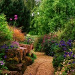 Планирование посадки растений в саду