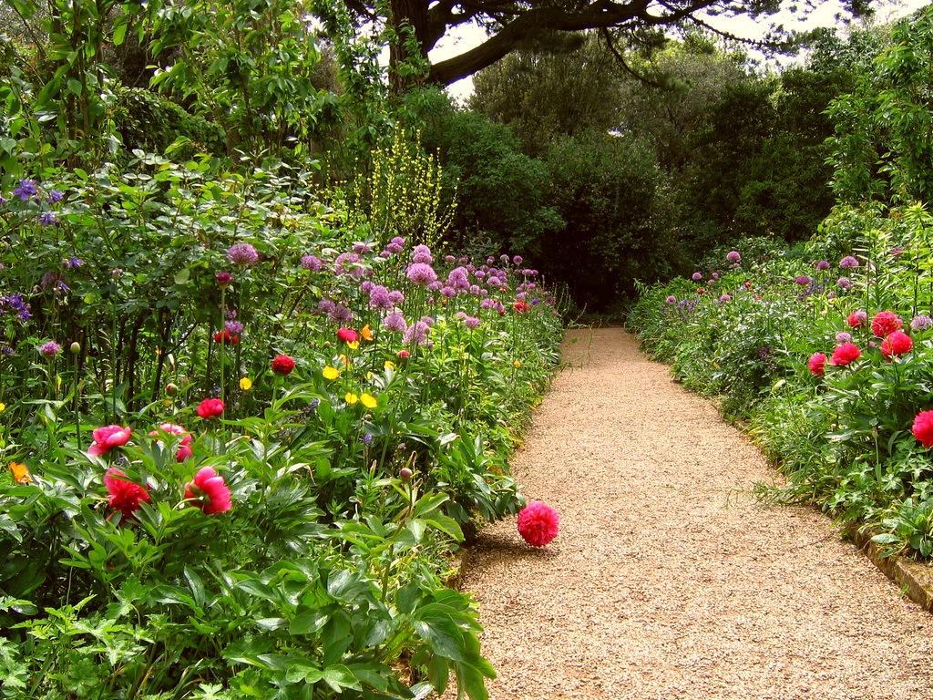 Сады которые не требуют большого