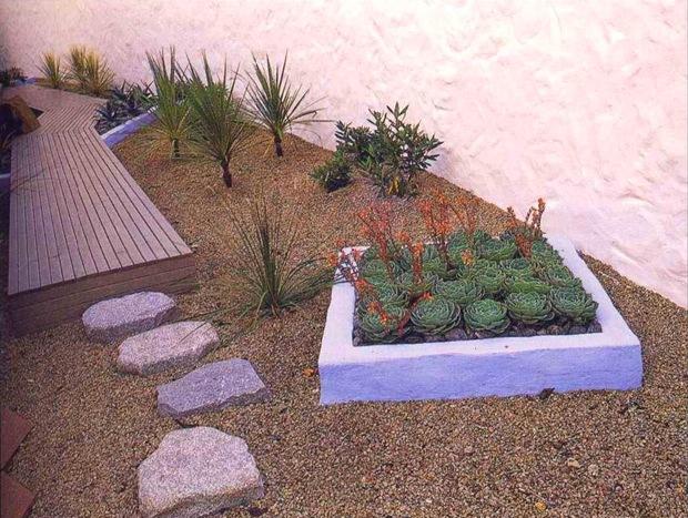 Минимум растений