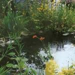 Маленький сад с прудом