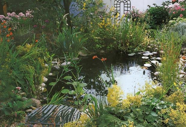 Пруд в саду