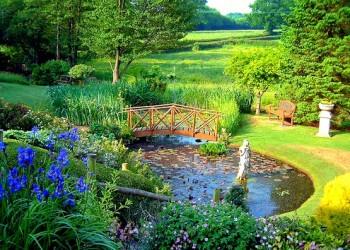 Тип планировки сада