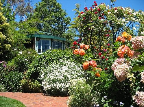 Сад на участке одними цветами не