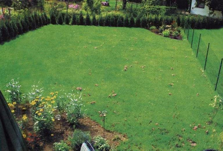 Сказочный дизайн сада