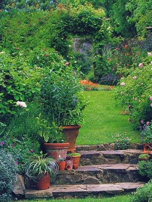 Дорожка в узком саду