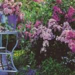 12 идей для сада в английском стиле