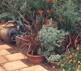 Растения для этно сада