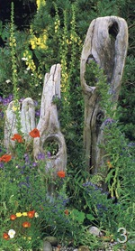 Коряги для украшения сада