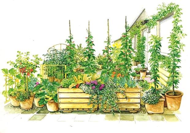 Контейнерный огород на площадке перед домом
