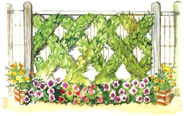 Украшение забора лианами и цветами