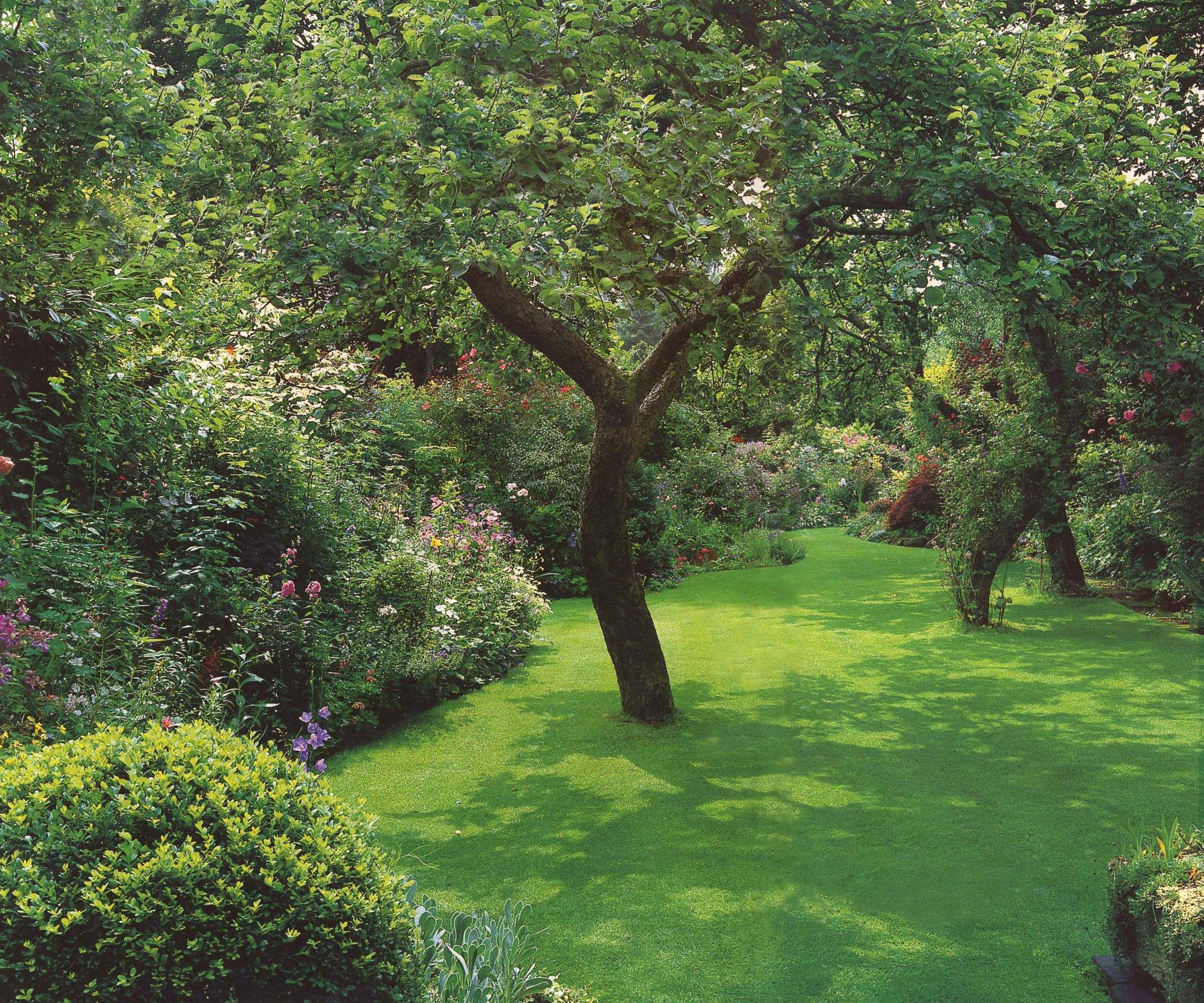 Хорошо спланированный сад с годами