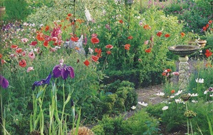 Идея для сада - цветники кантри