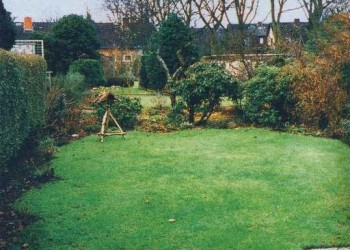 Оформление газона
