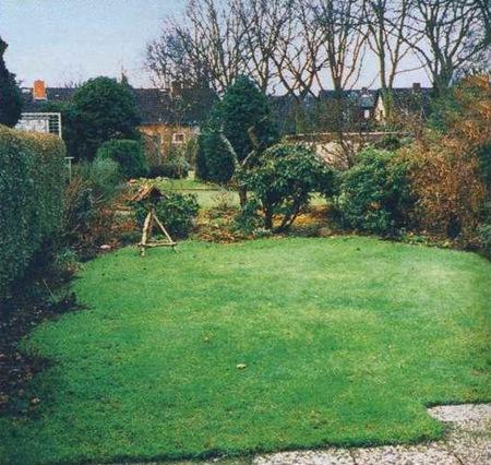 Неоформленный газон на маленьком участке