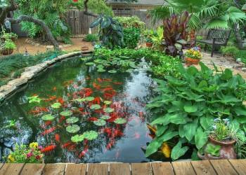 Гидроизоляция садового пруда