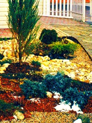 Композиция из камней с почвопокровными растениями и туей
